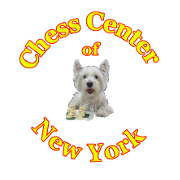 Logo for NY Chess Center